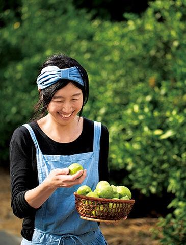 レモン畑訪問