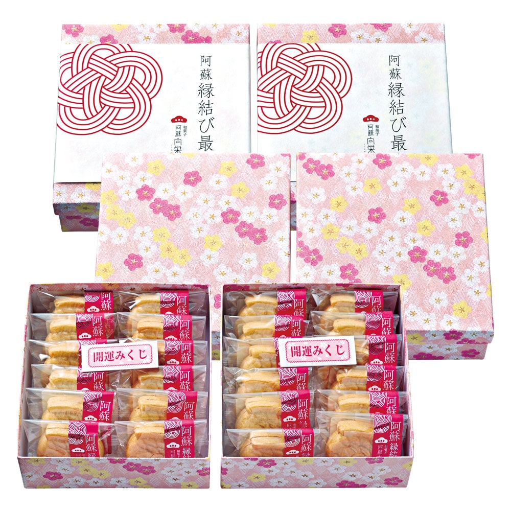 阿蘇縁結び最中 12個入り×2箱