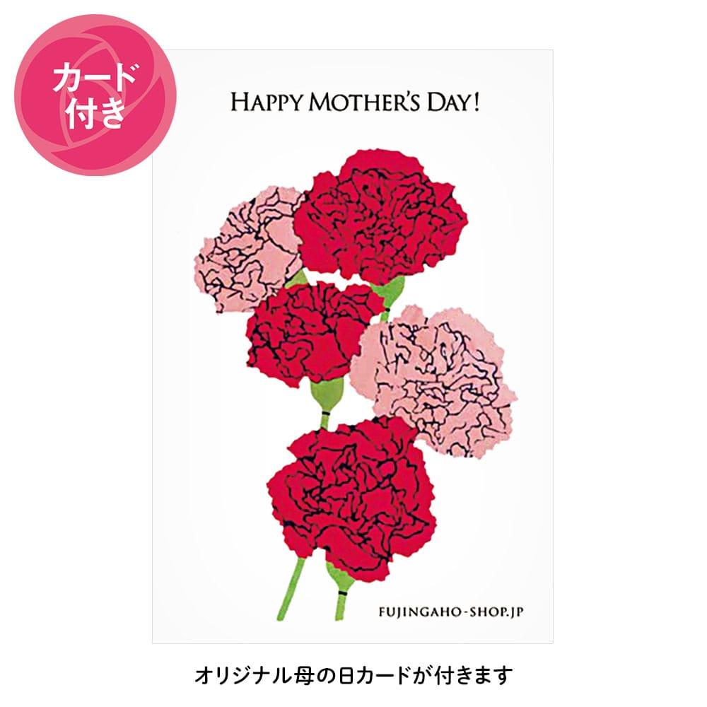 栗阿彌(渋皮栗・栗納豆)12個入り(母の日カード付)