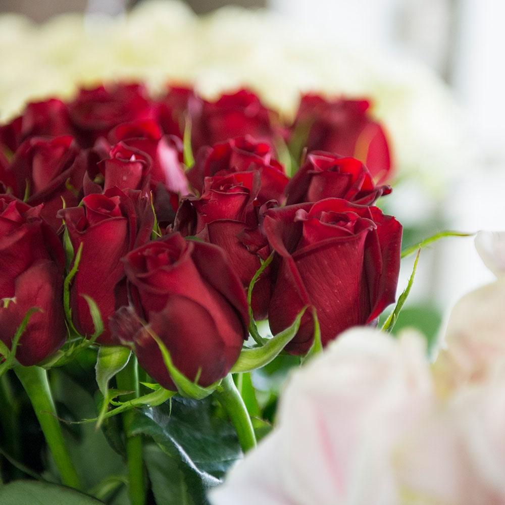 山形 産直 バラの花束(赤×ピンク・20本)(母の日カード付)