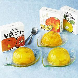 愛媛の柑橘ゼリー3種味くらべ 6個入り